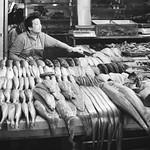 seafood dealer thumbnail