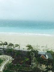 嵐 画像2