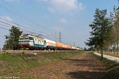 E633.204romano270917rail (Lorenzo Banfi) Tags: e633 e633204 204 mercitalia fs cargo treno merci old livrea vecchia blu grigio perla orientale tigre 633 633204