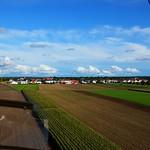 field view thumbnail