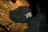 glarner mountains V (pat.netwalk) Tags: klöntal alps mountans mask copyrightpatrickfrank bildgutch