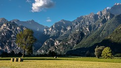 Fields and mountains. (AlbOst) Tags: lakecomo fields mountains bales eveninglight italy italianlandscapes trees farmland