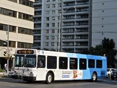 York Region Transit 942 (YT   transport photography) Tags: york region transit yrt new flyer d40lf bus