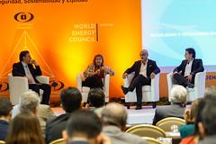 Panel: Movilidad y Sostenibilidad Urbana