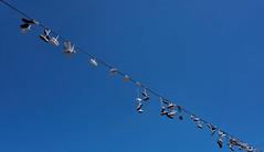 durchgelaufen (Froschkönig Photos) Tags: 6000 a6000 ilce6000 a6k 2017 himmel sky schuhe shoe leine prag blau blue metronom goldenestadt