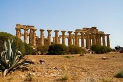 IMG_8231 (SalvoGulisanoFotografo) Tags: selinunte sicily greektemple