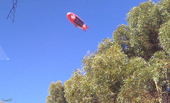 Holden, American Blimp A-170 over Mawson Lakes, Adelaide (faram.k) Tags: a170 americanblimp holden mawsonlakes southaustralia australia au