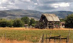 Barn Skeleton (arbyreed) Tags: arbyreed old forgotten neglected abandoned oldbarn fallingdown rural farm ranch oldwoodenbarn