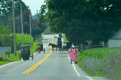 Leaving church (afagen) Tags: pennsylvania lancastercounty amishcountry groffdaleconferencemennonitechurch wengermennonite oldordermennonite mennonite horseandbuggy buggy