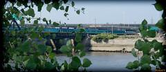Train sur le pont, Québec, Canada - 1983 (rivai56) Tags: villedequébec québec canada ca train sur le pont sony photographing bridge over saintcharles river