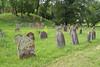 Jüdischer Friedhof bei Ingenheim (PauPePro) Tags: ingenheim jules weinberge weinfest billigheimingenheim rheinlandpfalz deutschland