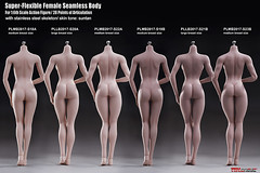 PHICEN PLMB2017-S18-S23 - 03 (Lord Dragon 龍王爺) Tags: 16scale 12inscale onesixthscale actionfigure doll hot toys phicen tbleague seamless female