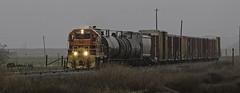 CFNR 1569 (lennycarl08) Tags: cfnr gp151 trains railroad shortline california sacramentovalley northerncalifornia