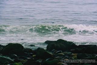 Wave After Wave 🌊🌾 #Wave #Ocean #Sea #Beach #Green #Texture #Rocks #Stormy #Dark #Moody #Rainy #Weather #SeaFoam #BaysWaterBeach #Spring #CanonPowershotSX530HS #Canon #Powershot #SX530HS #CanonCanada #VSCO #VSCOcam #VSCOfilter #VSCOgrid