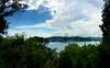 Bosphorous from another hill (Jonathan-Livingston) Tags: mihrabat korusu bosphorous boğaz köprü bridge deniz sea istanbul kanlıca grove