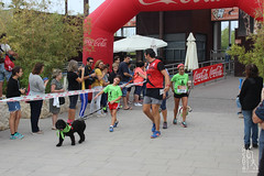 "Llegada de la carrera - 5ª Can-rrera Popular de Valencia • <a style=""font-size:0.8em;"" href=""http://www.flickr.com/photos/145784091@N07/36717656594/"" target=""_blank"">View on Flickr</a>"