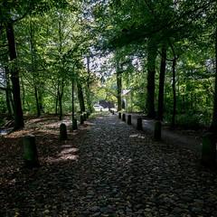 Auffahrt zum Berner Schloss 01 (p.schmal) Tags: panasonicgx80 hamburg farmsenberne bernerschloss schlosspark
