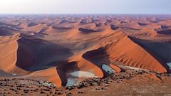 Sand Dunes | P9193254-1 (:munna) Tags: namibnaukluft national park namibia namib naukluft sand dunes