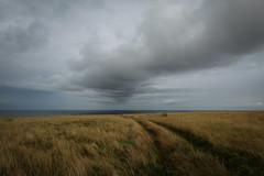 Apocalypse Weather (Thomas Verleene) Tags: apocalypse road route nuage nuages cloud clouds champs falaise ciel terre mer mers océans océan sombre irlande ireland horizon paysage paysages landscape landscapes agua eos