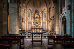 In Gold We Trust (McQuaide Photography) Tags: haarlem nederland netherlands holland noordholland europe sony a7rii ilce7rm2 alpha mirrorless 2470mm sonyzeiss zeiss variotessar fullframe mcquaidephotography adobe photoshop lightroom tripod manfrotto light architecture inside indoor interior building city cathedralofsaintbavo religiousbuilding religion catholic church cathedral basilica basiliek josephcuypers kathedralebasilieksintbavo holy sacred hallowed longexposure altar gold golden ornate detailed nopeople