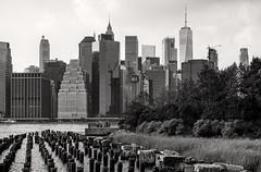 Recharging at the Riverfront (LJS74) Tags: brooklyn brooklynbridgepark riverfront eastriver newyorkcity nyc manhattan financialdistrict oneworldtradecenter 1worldtradecenter 1wtc skyscraper skyline cityscape blackandwhite blackwhite bw monochrome