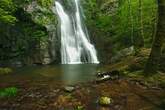 Fervenza (f@gra) Tags: fervenza cascada waterfall paisaje landscape galicia spain forest bosque water agua green sony sigma