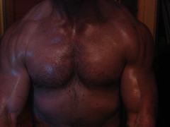 PECS (flex130) Tags: muscle muscles muscular massive big huge mondo bicep biceps bizeps bodybuld bodybuilder bodybuilding flex flexing guns chest pecs delts traps shoulders fit fitness workout weightlifter ripped jacked lats abs 18inch 18inchbiceps welldeveloped wellbuilt