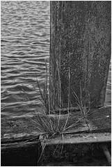 Noordpolderzijl (Schnarp) Tags: noordpolderzijl noordpolder groningen provinciegroningen waddenzee havenm harbour hafen port polder landaanwinning zielhoes nederland paysbas netherlands niederlande holland hdr pentaxk10d blackandwhite zwartwit noiretblanc schwartzundweiss wattenmeer
