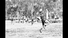 The ULTIMATE FRISBEE, State Championships. (Michael Desimone) Tags: ultimate frisbee mooroopna victoria australia michael desimone canon d7 eos sigma 85mm f14 7d photography state championships sport jumping leaping running catching catch oval kelpie dog speed polaris slide show purple planet st john ambulance