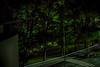 17.9.2017 Sunnuntaiaamu Sundaymorning Turku Åbo Finland (rkp11) Tags: 1792017 sunnuntai aamu sunday morning turku åbo finland syyskuu september septiembre settembre 9月 九月 월 setembro wrzesień septembre eylül сентябрь syksy autumn otoño autunno 秋 가을 outono jesień automne herbst ฤดูใบไม้ร่วง sonbahar осень sonyilce5100 hdrefexpro2 hdrphotogram aurajoki auraå riveraura aurariver fiume rio fluss joki stream bourn 川 강 rzeka rivière แม่น้ำ река riverbank yö night varhaisaamu earlymorning aamuyö eerikinkatu lönnrotinpuisto