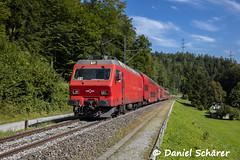 Re 456 542 / Langnau a.A. (Daniel Schärer) Tags: daniel schärer szu camping geissau re456 re456542 shilwald langnauamalbis langnauaa s4 zürich thalwil lokpendel
