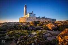 Golden (ianbrodie1) Tags: sunrise coast coastline sea seascape rocks seaweed golden stmarys lighthouse blue sky clear leefilters nikon ocean pebbles seaside tyneside north east