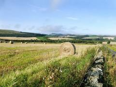 The Bonnyton Road (eric robb niven) Tags: ericrobbniven scotland dundee auchterhouse landscape cycling angus hills sidlaw farmland autumn