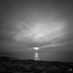 Sun setting in the sea (ShimmeringGrains) Tags: square örskär sunset scannad mediumformat hasselbladswc bw kodakhc110b film filmphotography sunsetinthesea ilfordhp5 ilford svartvitt 120film 6x6 ©marieahlén h316 mellanformat hasselblad shimmeringgrains kodakhc110 scanned analog blackandwhite