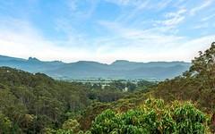 445 Clothiers Creek Road, Nunderi NSW