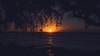 Last Rites (Garden State Hiker) Tags: kauai beach landscape sunset pacificocean keebeach sky goldenhour hawaii haenastatepark clouds