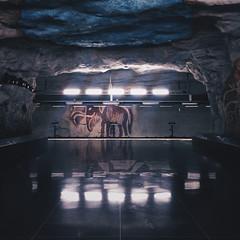 Tensta (Olly Denton) Tags: station transport train underground subway metro art lights design reflection concrete pubicart beauty dark painting mammoth iphone iphone6 6 vsco vscocam vscostockhom vscosweden ios apple mac shotoniphone tenstametrostation tenstastation tensta stockholm sweden sverige