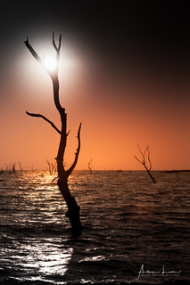 Creepy Kariba 9
