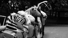Soft toys (Radu-Alexandru) Tags: plush sony bucharest childhood toys horse race loltags