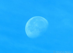 day time moon-london (nazirshahid65) Tags: daytime moon space planet outdoor bright blue london city europe canon750d efs70300mm usm