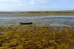 Low tide near Kingstown, Clifden (Inklaar) Tags: connemara connacht countygalway boot republiekierland ierland inklaar:see=all conamara connaught contaenagaillimhe cúigechonnacht ireland poblachtnahéireann republicofireland boat éire ie