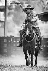 Peão (Ars Clicandi) Tags: paraná brasil br brazil parana jaboti prova do laço comprido peao peão boiadero boiadeiro bp pb branco preto bw black white cowboy