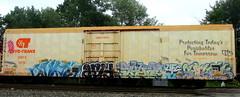 - arid - skyza - sektr (timetomakethepasta) Tags: gem state arid skyza sektr ufc freight train graffiti art cryx cryotrans reefer benching selkirk new york photography atb htf