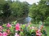 Natura di fine agosto (Eli.b.) Tags: torrente acqua water flower fiori fleurs nature natura paesaggio estate summer abigfave citrit