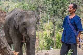 trekking chiang mai - thailande 32