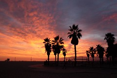 Sunset - Venice beach