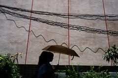 . (issaret.chalermsopone) Tags: street streetphotography streetphoto streetphotothailand thai thailand bangkok bkk umbrella lowkey olympus olympusomd omdem10mk2 zuiko17mm zuiko zuikodigital shadow spt siamstreetnerds
