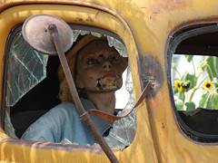 Just checkin' the makeup (Old White Truck) Tags: truck ford yellow 1945 pickup yancyyost dayton washington mirror stateoforegon highwaydepartment 47332 oregon state sunflower