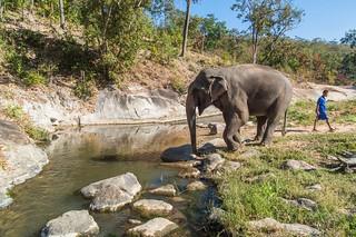 trekking chiang mai - thailande 11