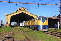 D-16000 en Temuco (Domingo Kauak) Tags: tren chile ferrocarril trencentral temuco d16000 alco ge d160 renfe 10000 railway efe locomotora locomotive